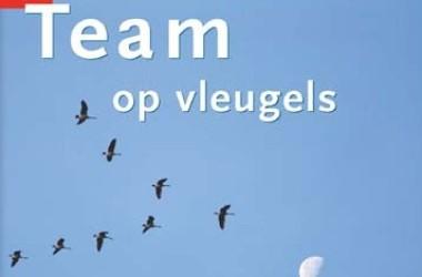 Team op vleugels- Martijn Vroemen