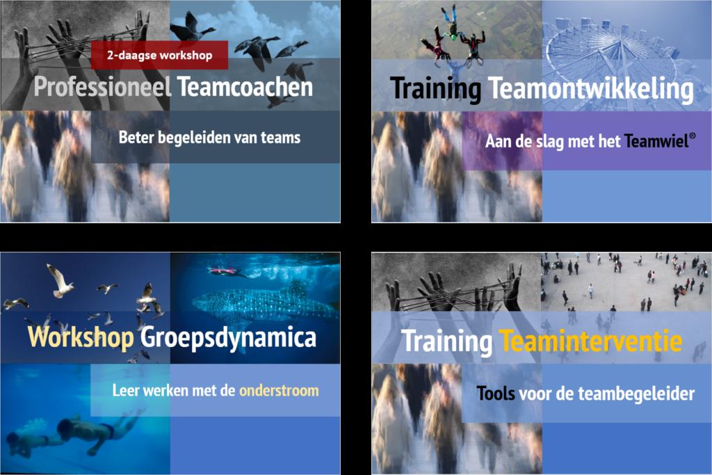 Vier onderdelen van de opleiding Teamcoaching Essenties