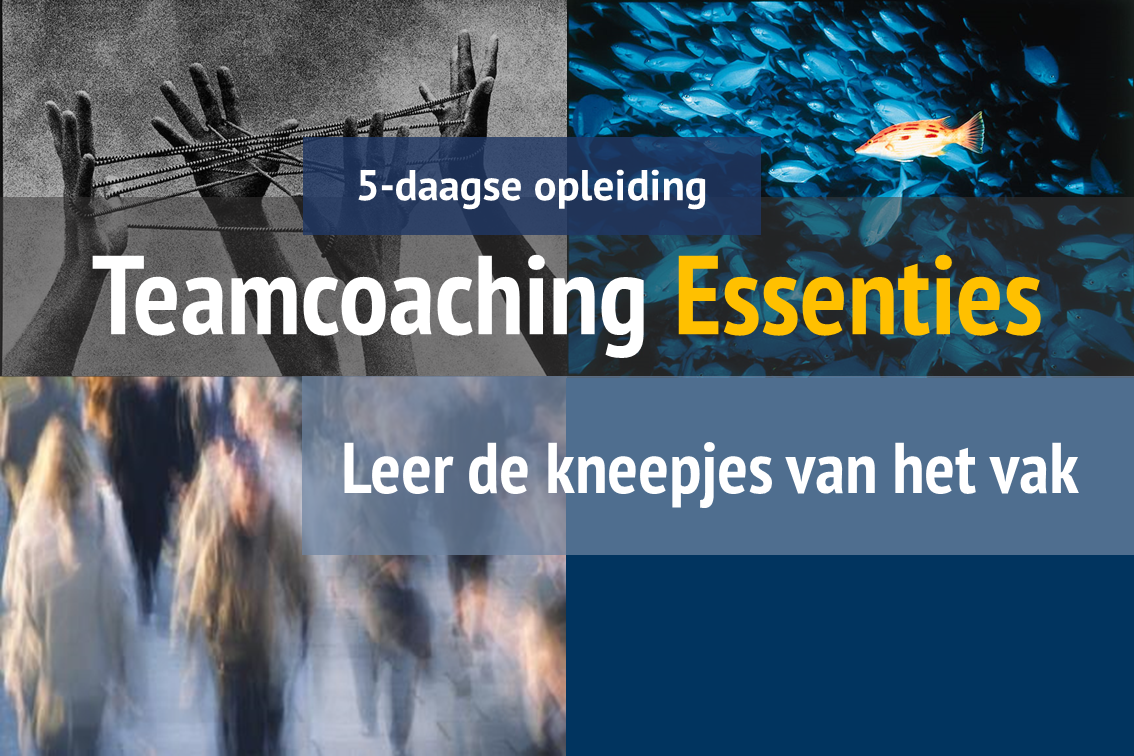 Teamcoaching Essenties Opleiding van Teamchange