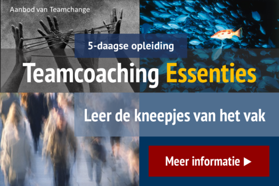 Opleiding Teamcoaching Essenties Teamchange (3)