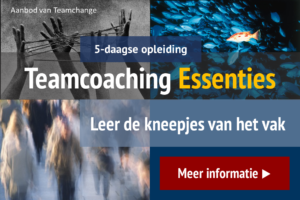 Opleiding Teamcoaching Essenties van Teamchange