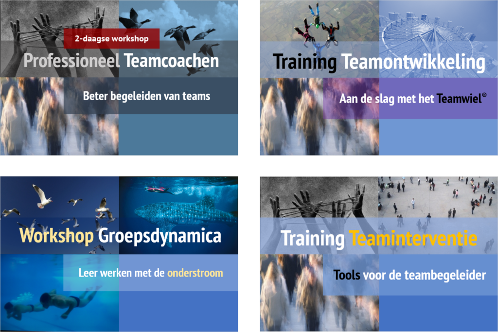 opleiding teamcoaching cursus