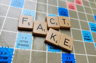 Teamchange Fake Kennis Martijn Vroemen