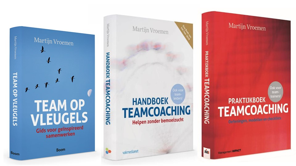 Boeken van Martijn Vroemen - Teamchange
