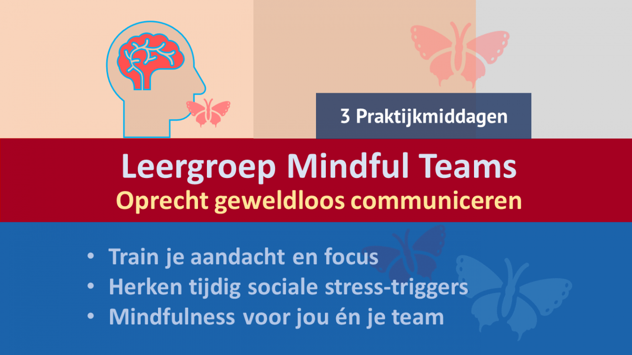 leergroep mindful teams