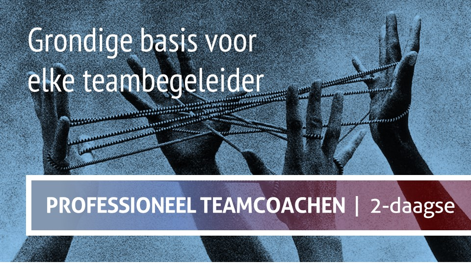 Teamchange basistraining teamcoach Professioneel Teamcoachen