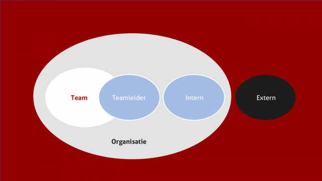 teamchange teamcoach teamcoaching rollen