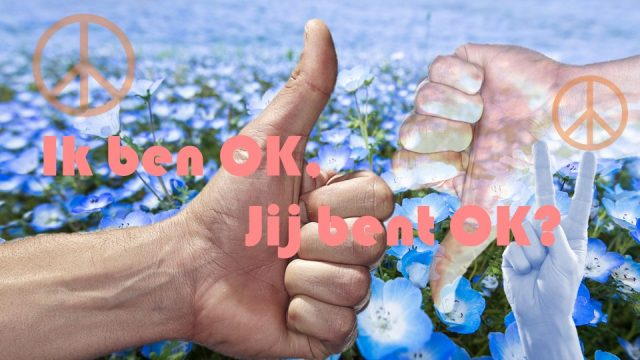 I'm OK, you're OK – Het supermodel van Thomas Harris