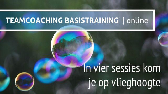 Teamcoaching Basistraining Online Teamchange
